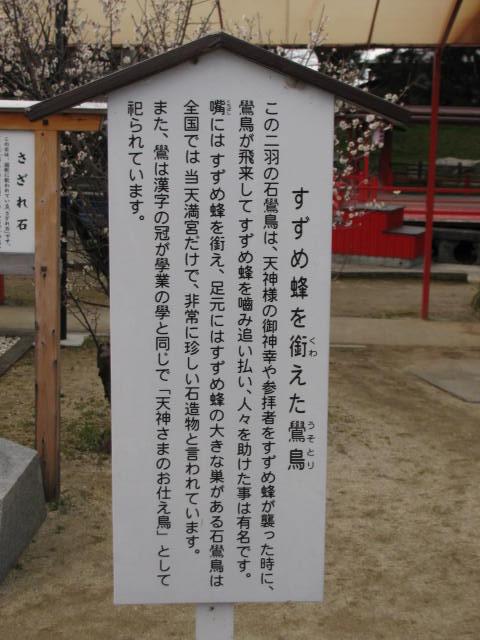 111_4376.JPG